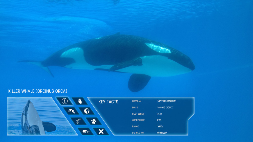 zoo_wireframe_0003_Horizontal Main Info