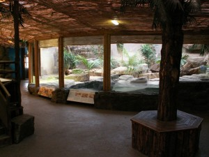 Example of reptile enclosure at a zoo